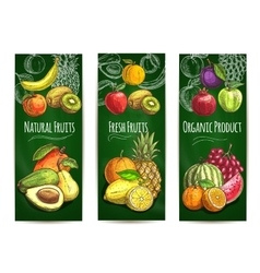 Organic fresh juicy fruits sketch poster vector image vector image