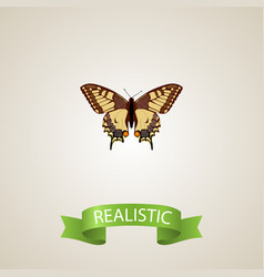 realistic checkerspot element vector image vector image
