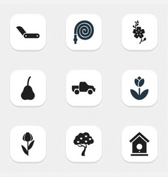 set of 9 editable plant icons includes symbols vector image