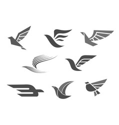 Business brand icons of bird wings vector