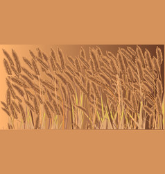 Crop field vector