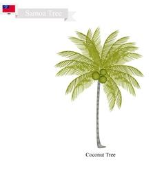 Coconut tree a native tree of samoa vector
