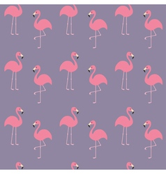 Flamingo set Seamless Pattern Exotic tropical bird vector image