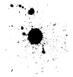 Multiple black ink drops and splashes vector image vector image