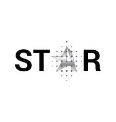 Star- graphic siver symbol for company vector image