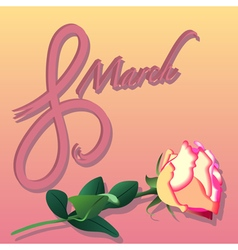 Womens day and Rose vector image vector image