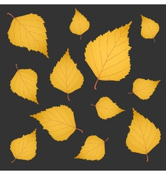Autumn background of yellow gold birch leaves vector