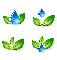 Green leaf and water drop vector