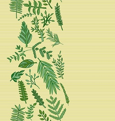 Herbal border pattern hand drawn vector