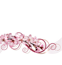 blossoming sakura cherry branch with pink flowers vector image