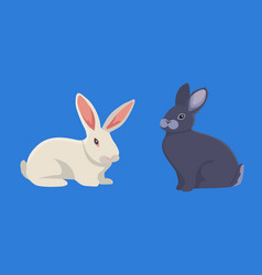 Cartoon rabbits set vector