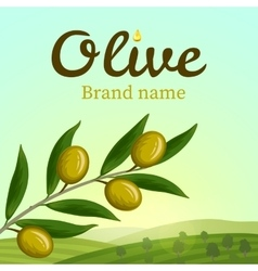 Olive label logo design Olive branch vector image