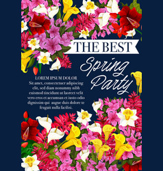 Spring party flowers springtime poster vector