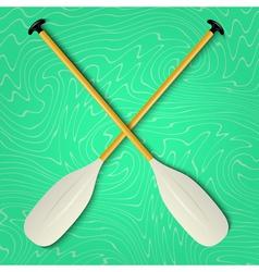 Professional canoe oars vector image