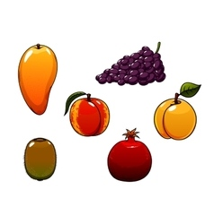 Juicy and sweet isolated fresh fruits set vector
