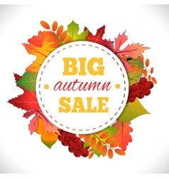 Big autumn sale vector