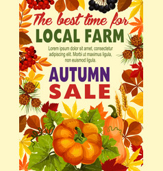 Autumn sale poster of farm harvest vegetable leaf vector