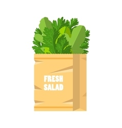 Fresh green salad in paper bag vector image