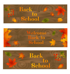 Set of back to school backgrounds with leaves vector