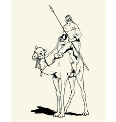 Tuareg camel rider vector image vector image