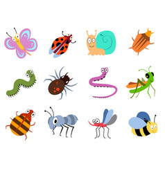 cute and funny bugs insects collection vector image