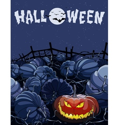 Cartoon halloween night in a field with pumpkins vector