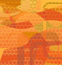 abstract background - honey vector image vector image