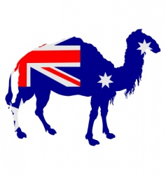 flag of Australia with camel vector image