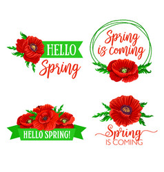 Spring time flowers and quotes bouquets vector