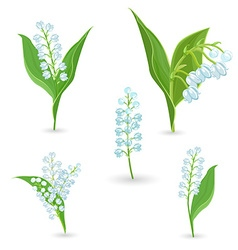 Cute collection of lilies of the valley for your vector