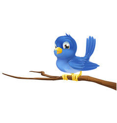 Bluebird on tree branch vector