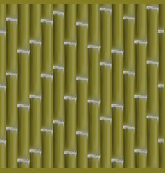 Seamless background of bamboo stalks vector