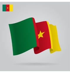 Background with waving Cameroon Flag vector image
