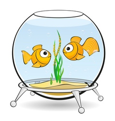 Couple goldfish in an aquarium vector