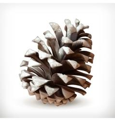 Pine cone icon vector