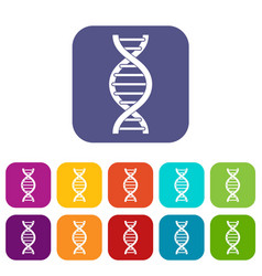 Dna spiral icons set flat vector