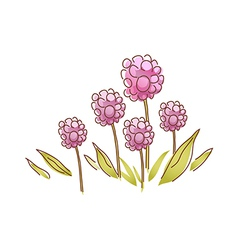 Indian strawberry bloom vector image