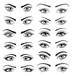 set open beautiful female eyes isolated on white vector image vector image