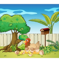 A hen and her chicks vector image