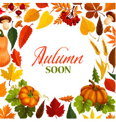 Autumn poster with frame of fall season nature vector