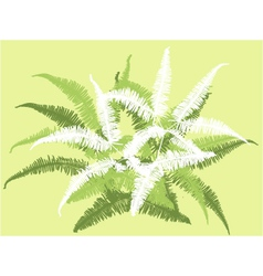 grass leaf background vector image vector image