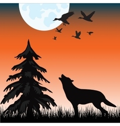 Wolf in wood vector image
