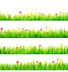 Green grass with daisy flowers isolated eps 10 vector