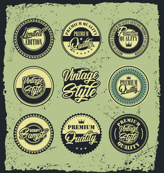 Retro vintage blue and green label badges vector
