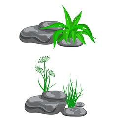 Stones with green grass vector