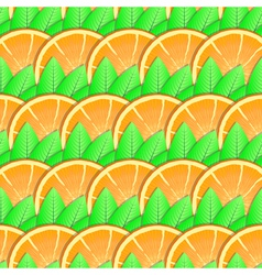citrus-fruit background vector image