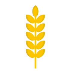 grain spike icon isolated vector image