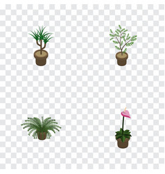 Isometric flower set of plant grower houseplant vector