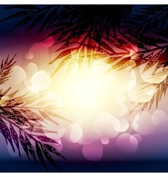 Summer background with palm-tree brunches vector
