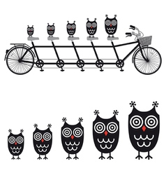 cute owls on tandem bicycle vector image vector image